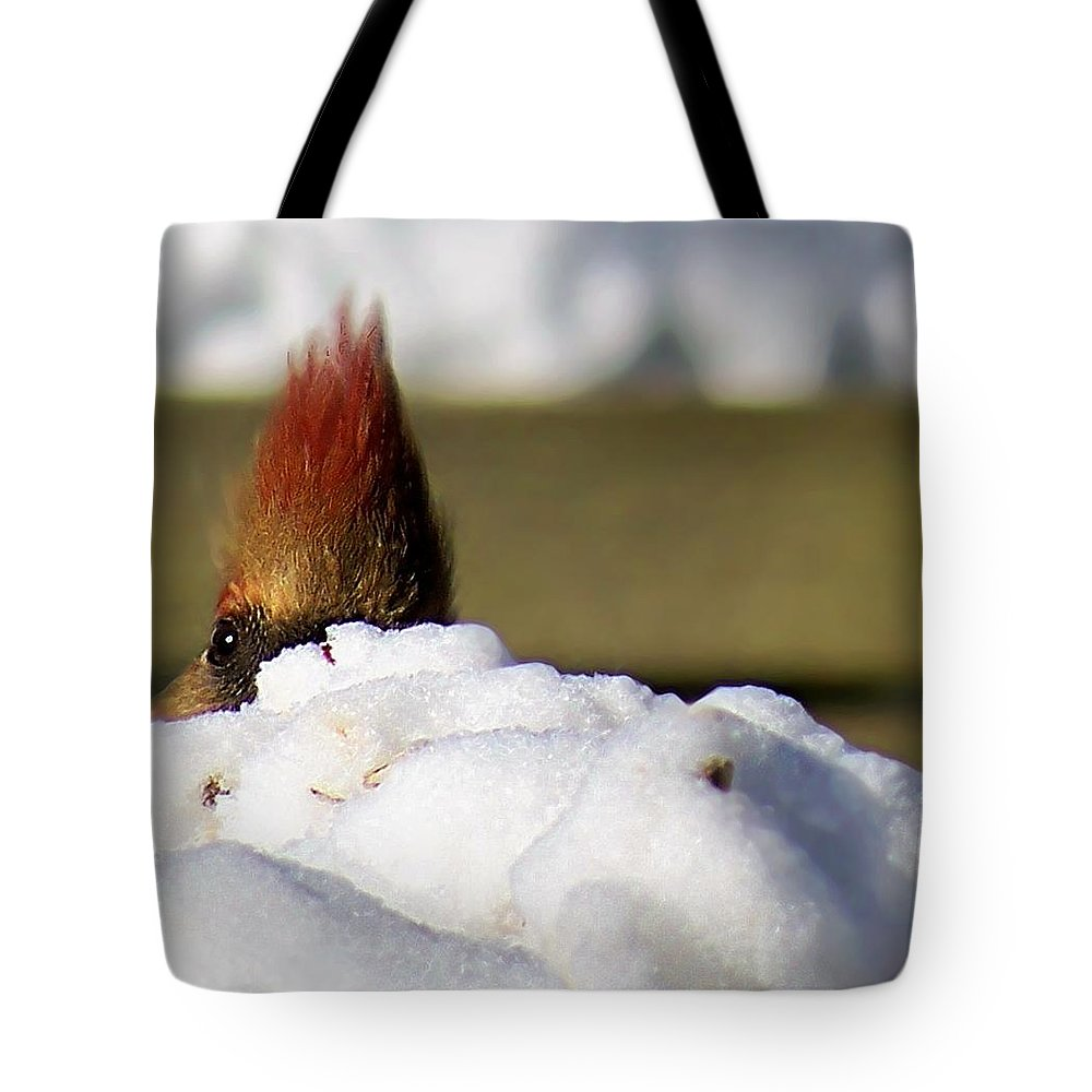 Snow Tote Bag featuring the photograph Watching You by Marysue Ryan