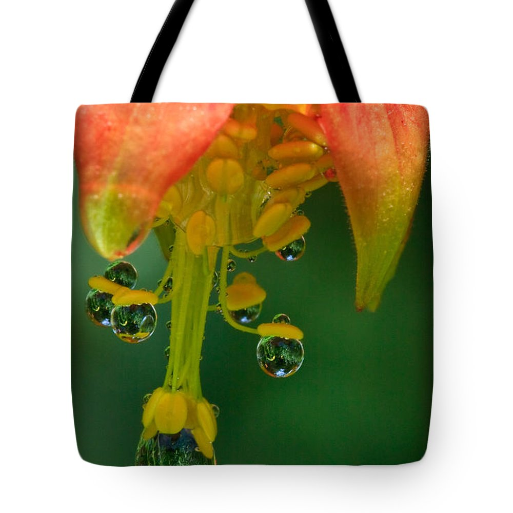 Columbine Tote Bag featuring the photograph Water Droplets by Beth Sargent