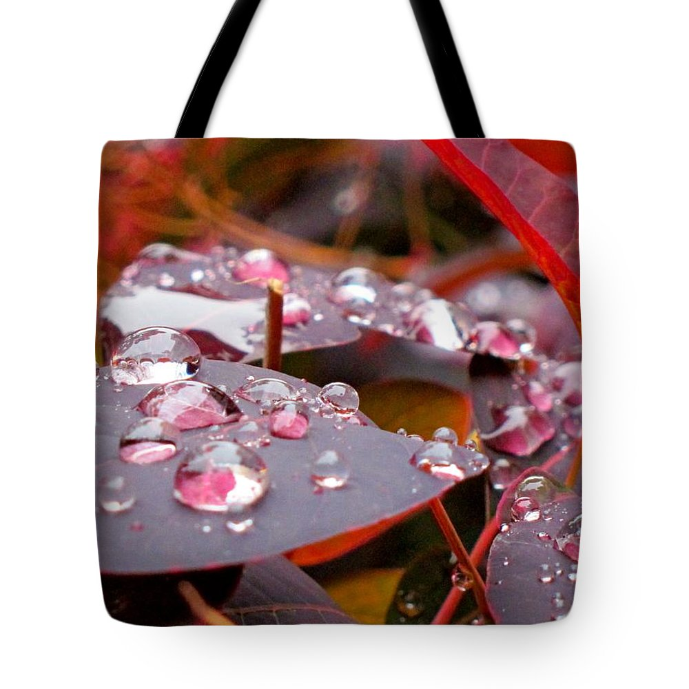 Water Tote Bag featuring the photograph Water Drops After The Rain by Lena Photo Art