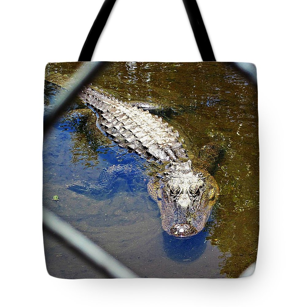 Gator Tote Bag featuring the photograph Water Hole Gator by MTBobbins Photography