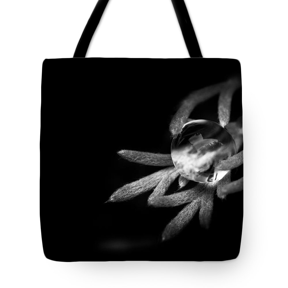 Black And White Tote Bag featuring the photograph Water Is Life by Shane Holsclaw