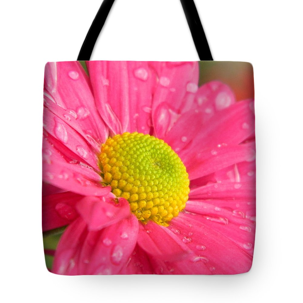 Pink. Yellow Tote Bag featuring the photograph Water Kissed Pink Chrysanthemum by Nicki Bennett