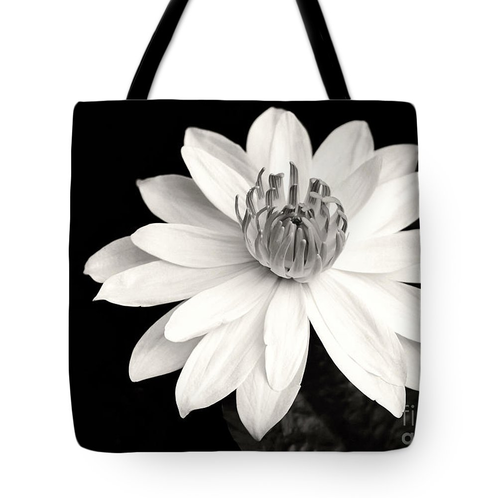 Landscape Tote Bag featuring the photograph Water Lily Ballerina by Sabrina L Ryan