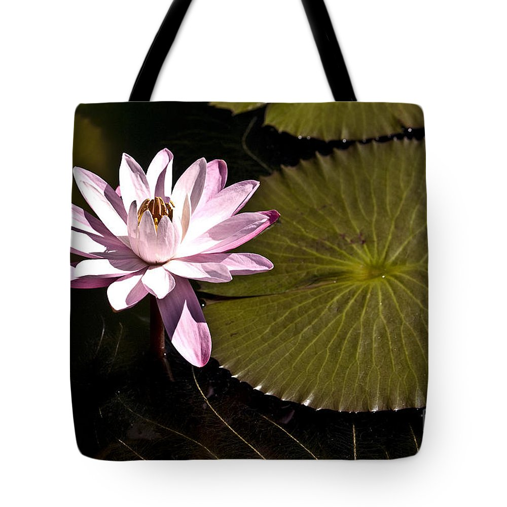 Water Llilies Tote Bag featuring the photograph Water Lily by Heiko Koehrer-Wagner