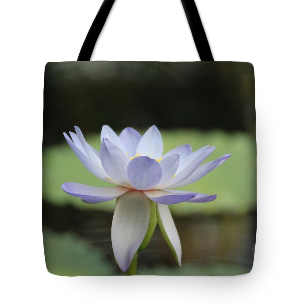Water Lily Tote Bag featuring the photograph Water Lily by Lynn England