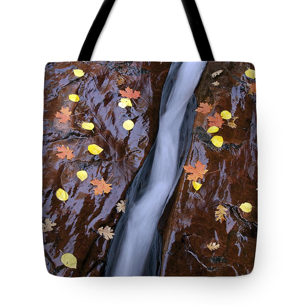 Zion National Park Utah Parks Water North Creek Subway Trail Trails Landscape Landscapes Rock Autumn Leaves Fall Color Leaf Tote Bag featuring the photograph Water Ribbon by Bob Phillips