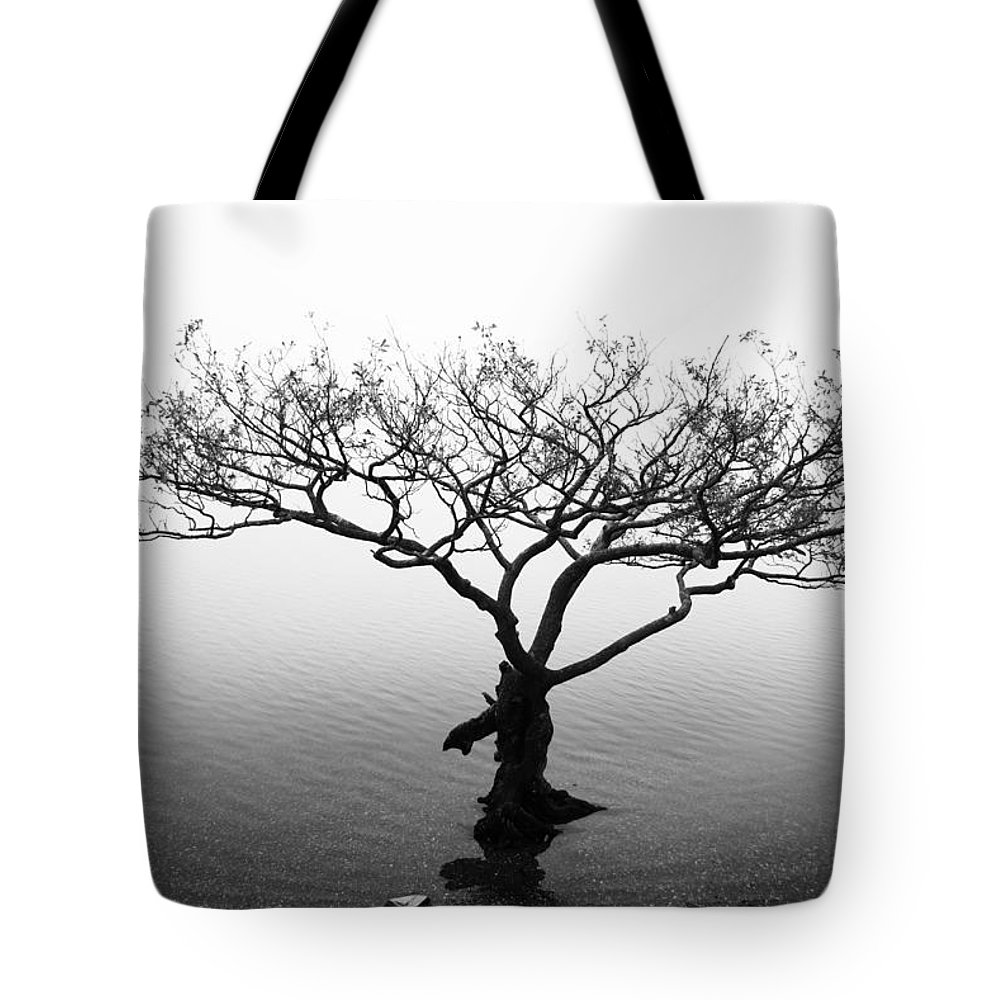 Tree Tote Bag featuring the photograph Water Tree by Les McLuckie