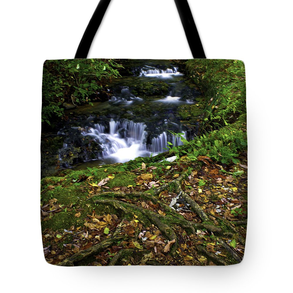 Rural Tote Bag featuring the photograph Water Under The Bridge by Ken Frischkorn