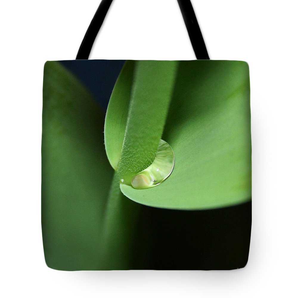 Fine Art Tote Bag featuring the photograph Water Worm by Linda Sannuti