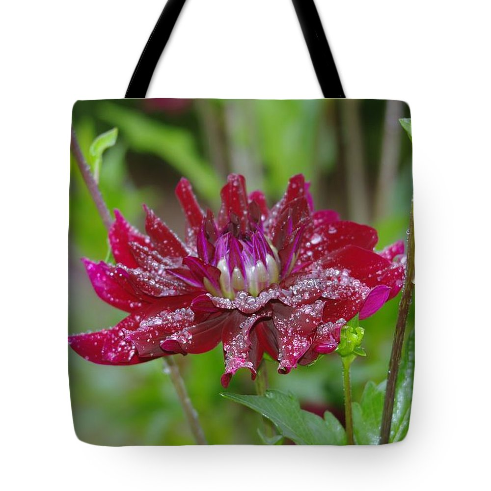 Viento Tote Bag featuring the photograph Waterdrops On Petals by Jeff Swan