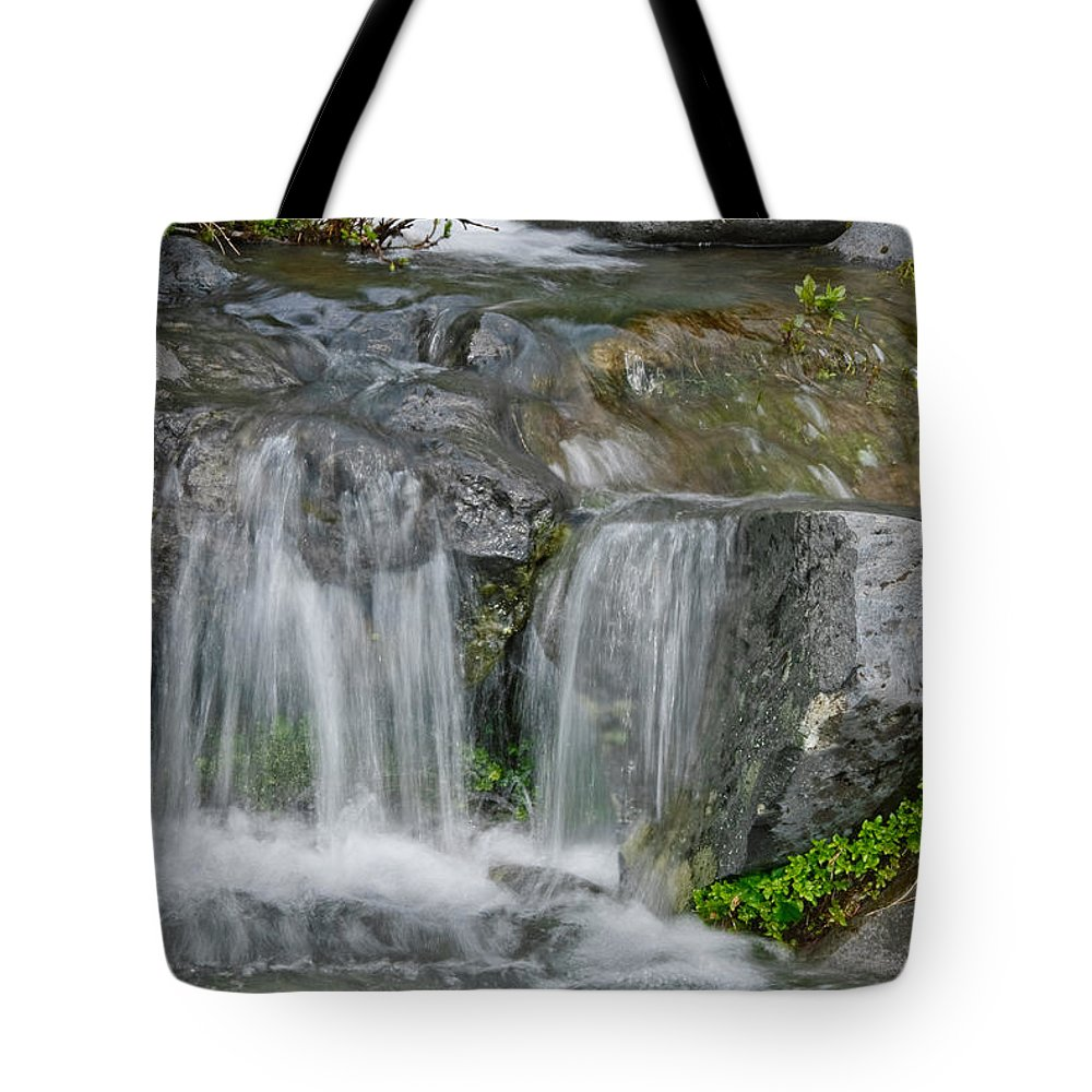 Beauty In Nature Tote Bag featuring the photograph Waterfall On The Paradise River by Jeff Goulden