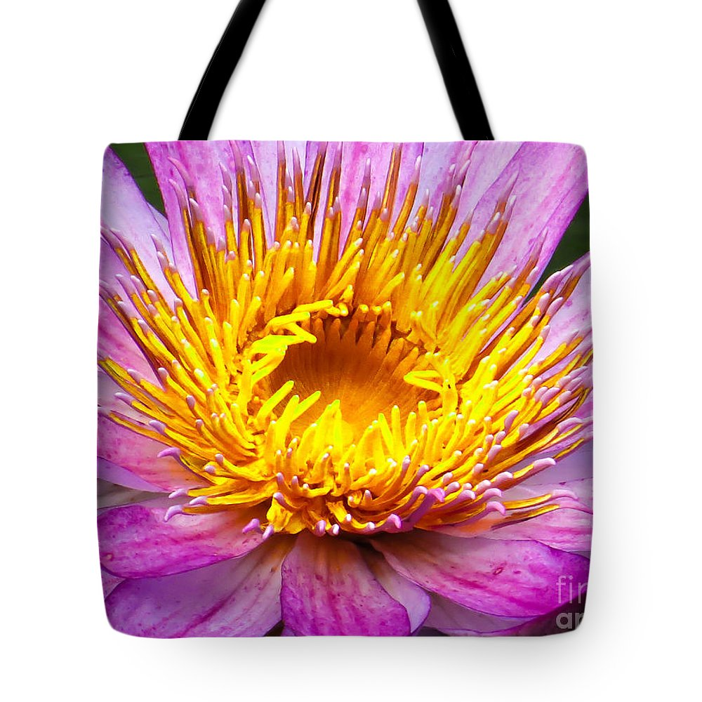 Waterlily Tote Bag featuring the photograph Waterlily by Zina Stromberg