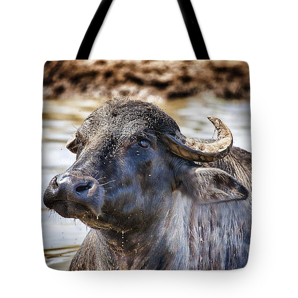 Water Buffalo Tote Bag featuring the photograph Waterlogged by Douglas Barnard