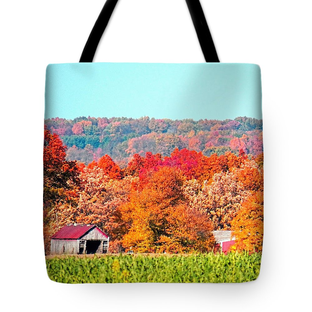 Ohio Tote Bag featuring the photograph Wayne County Ohio Autumn by Gena Weiser
