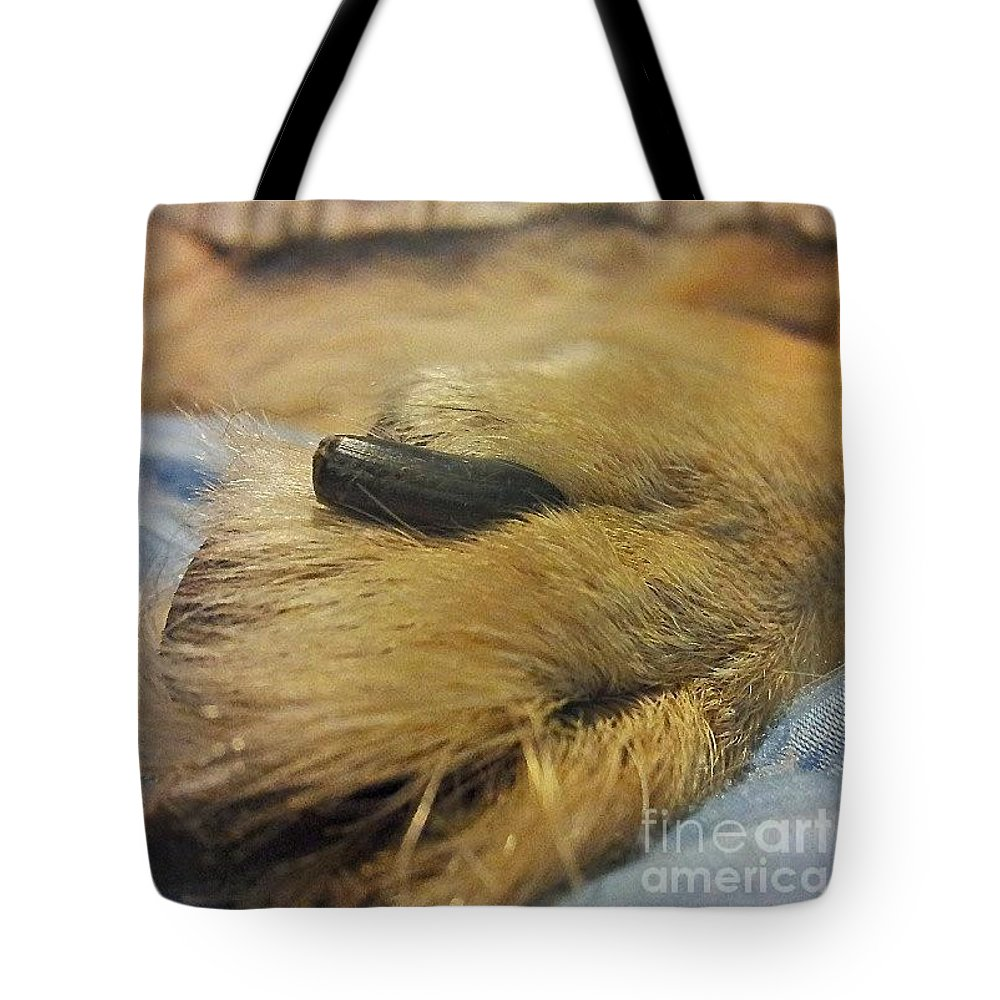 Germanshepherddogs Tote Bag featuring the photograph We Just Love Their Feet! Is That Weird? by Abbie Shores