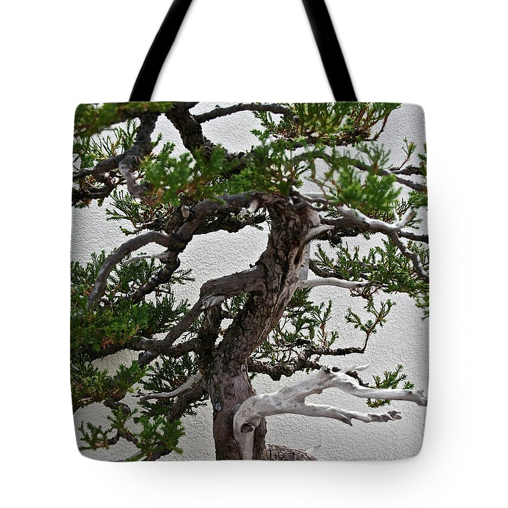 Bonsai Tote Bag featuring the photograph Weathered Bonsai by Susan Herber