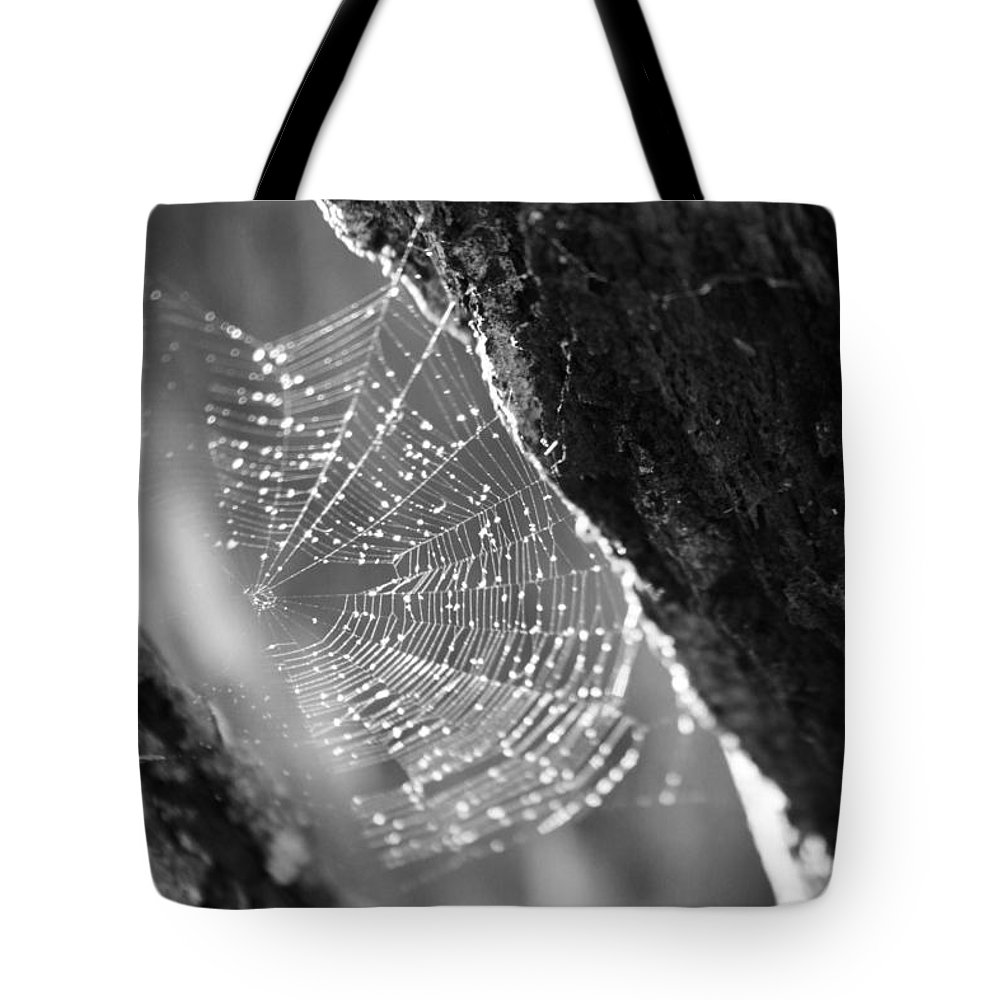 Kelly Hazel Tote Bag featuring the photograph Web 2 by Kelly Hazel
