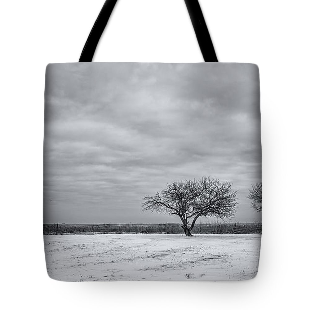 Winter Tote Bag featuring the photograph Weeping Souls Of Winter Desires by Evelina Kremsdorf