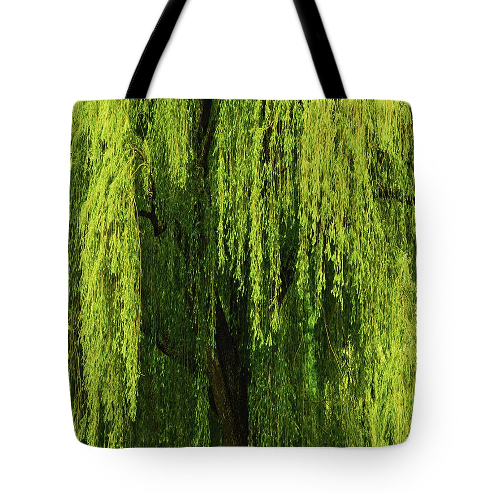 Weeping Willow Tote Bag featuring the photograph Weeping Willow Tree Enchantment by Carol F Austin