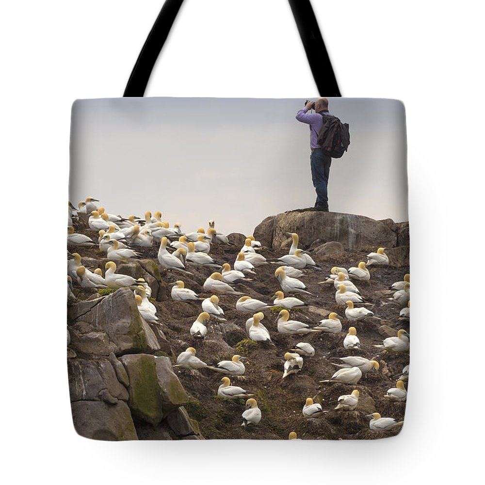 Adventure Tote Bag featuring the photograph Welcome Explorers by Evelina Kremsdorf