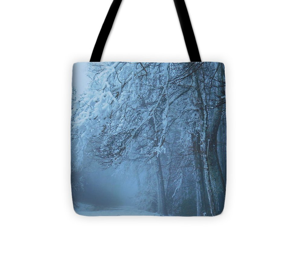Winter Tote Bag featuring the photograph Welcoming The Light by Diannah Lynch