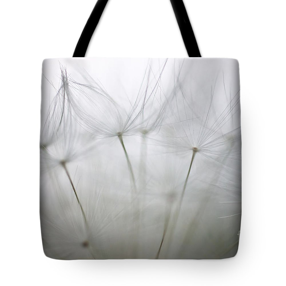 Dandelion Tote Bag featuring the photograph we'll always have Paris by Brothers Beerens