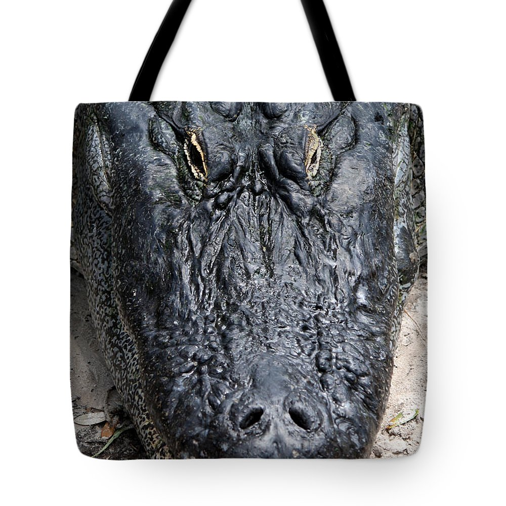 Busch Gardens Tote Bag featuring the photograph Well Fed by David Nicholls