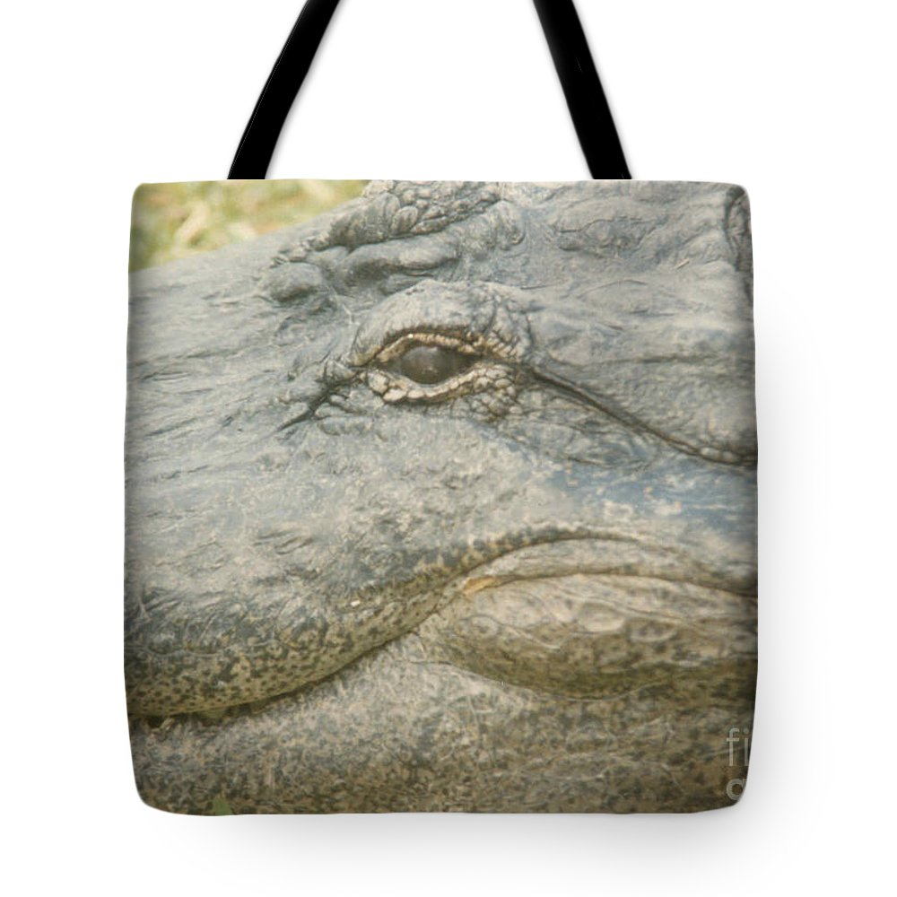 Eyes Tote Bag featuring the photograph Well Hi There by Jeffery L Bowers