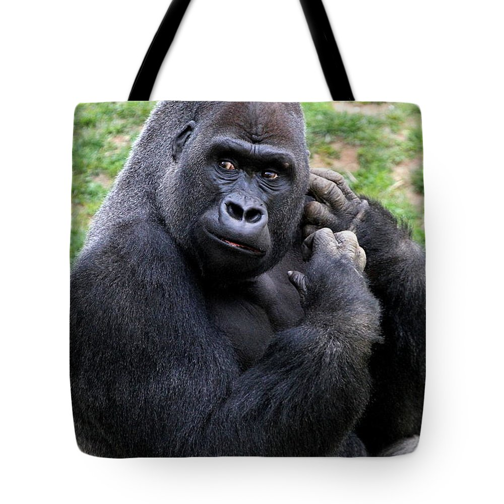Gorilla Tote Bag featuring the photograph Western Lowland Gorilla by Ken Keener
