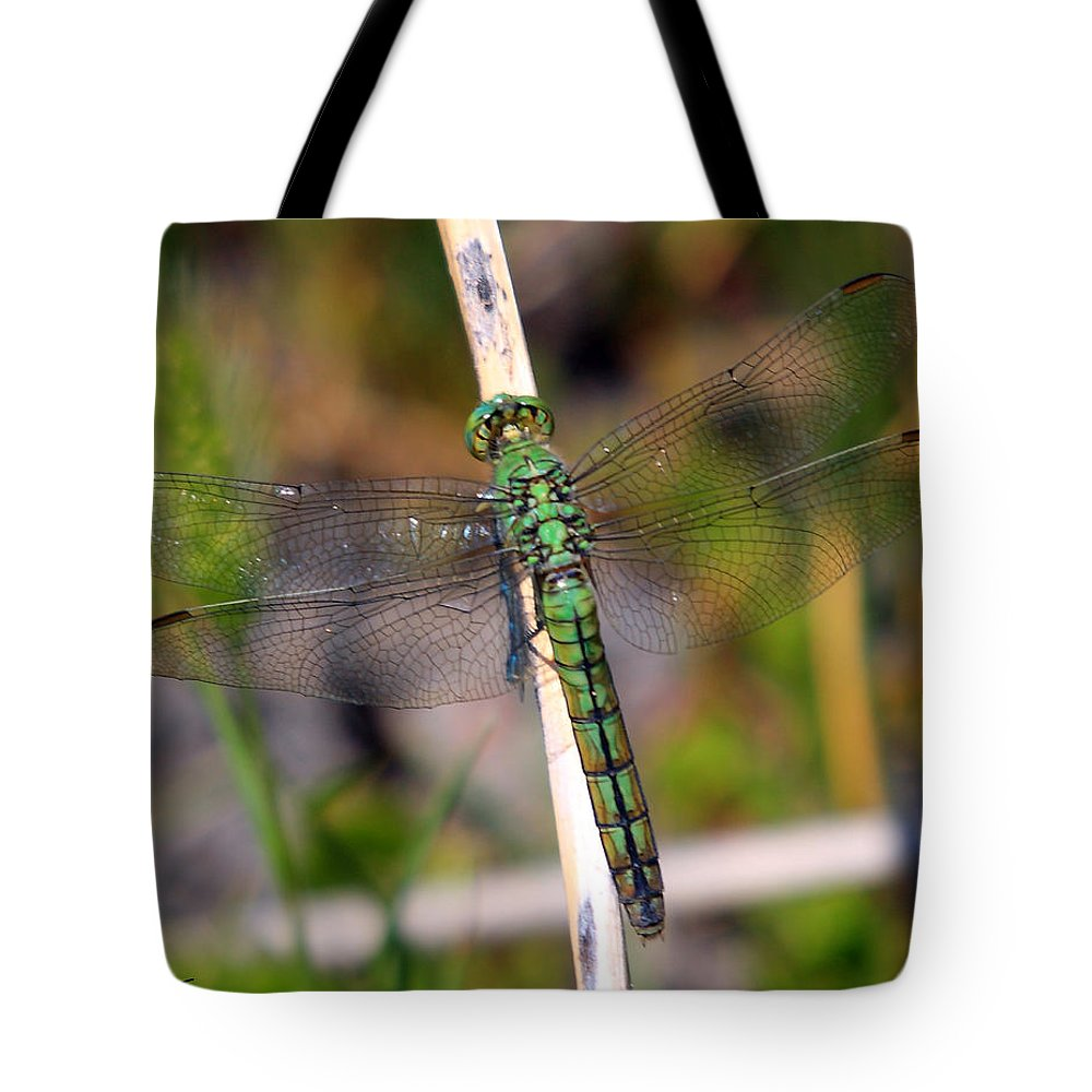 Nature Tote Bag featuring the photograph Western Pondhawk by David Salter