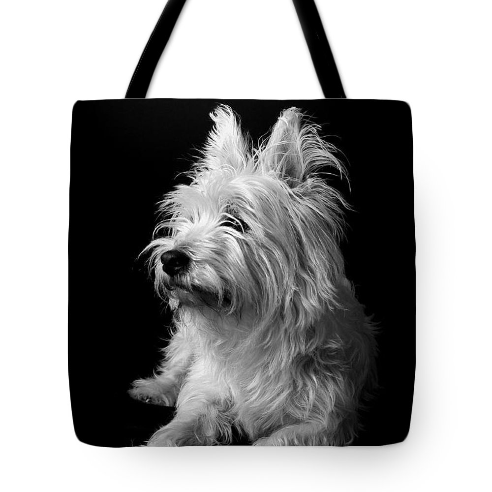 West Highland Terrier Black And White Image Tote Bag featuring the photograph Westie II by Catherine Reusch Daley