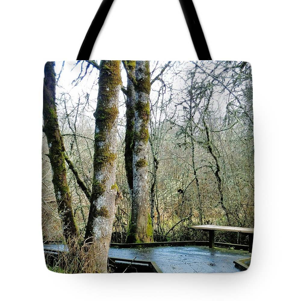 Wetlands Tote Bag featuring the photograph Wetlands In March by VLee Watson