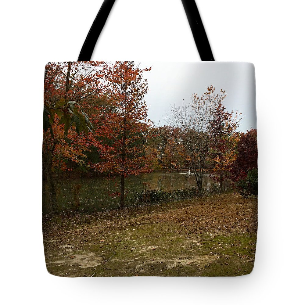 Trees Tote Bag featuring the photograph What A Beauitful Day by Chris W Photography AKA Christian Wilson