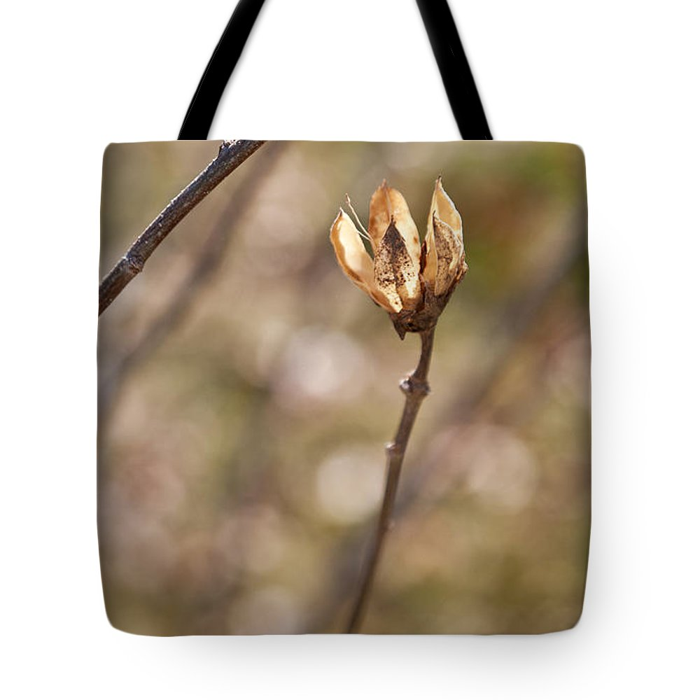 What Once Was Tote Bag featuring the photograph What Once Was by Michelle Constantine