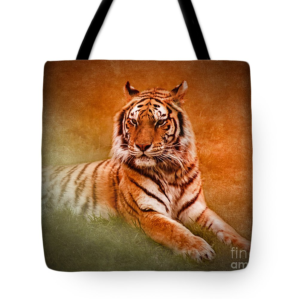 Bengal Tiger Tote Bag featuring the photograph What's New Pussycat? by Betty LaRue