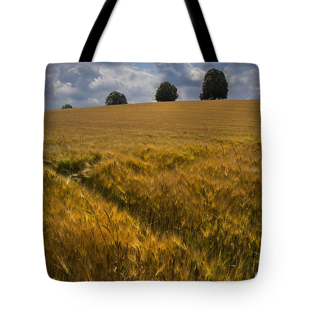 Switzerland Tote Bag featuring the photograph Wheat Fields by Debra and Dave Vanderlaan