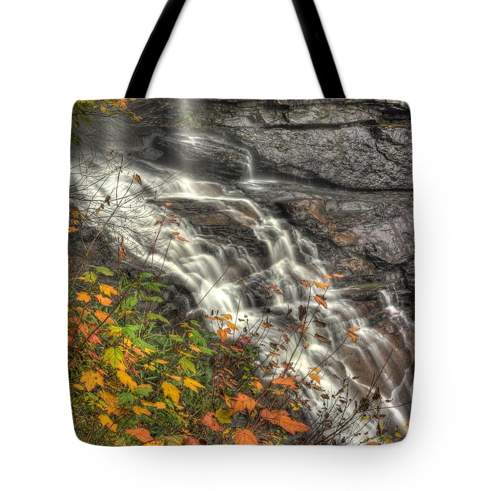 West Virginia Tote Bag featuring the photograph When Light And Water Falls-5a Blackwater Falls State Park Wv Autumn Mid-morning by Michael Mazaika