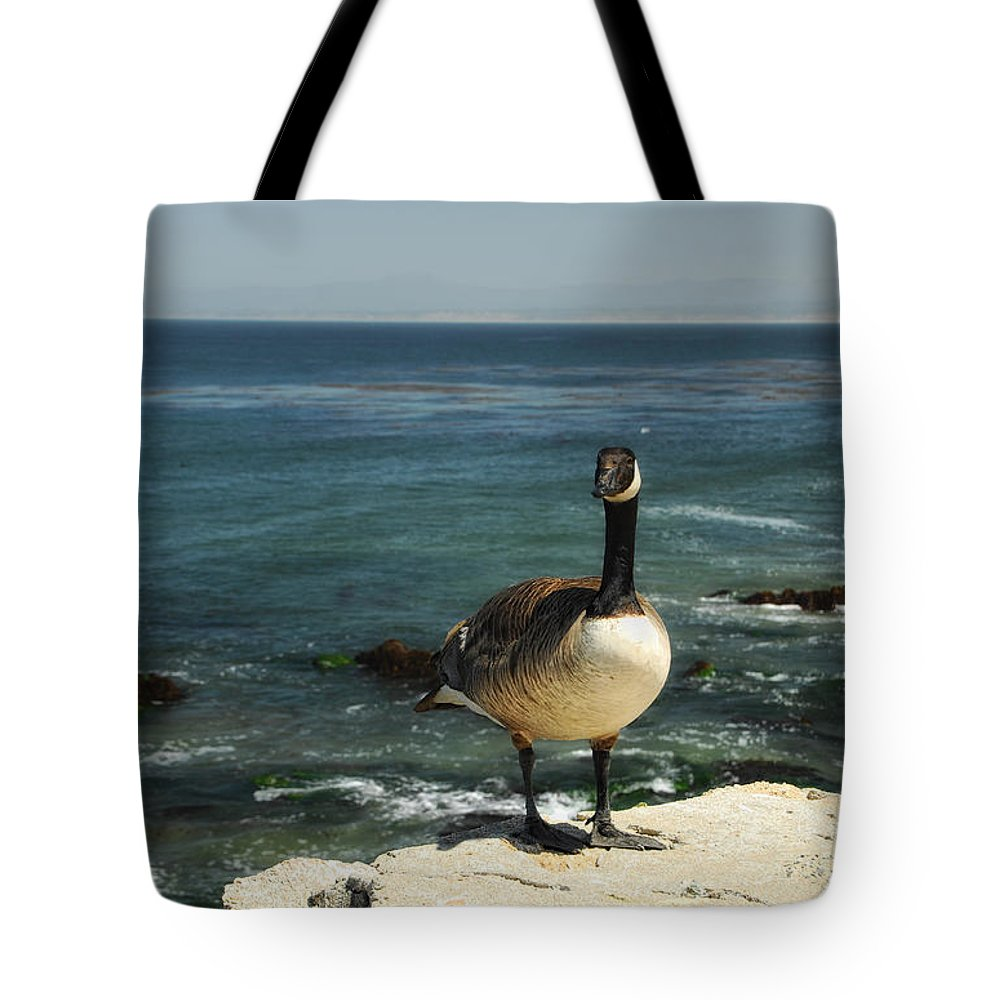 Goose Tote Bag featuring the photograph Where Do I Go From Here by Donna Blackhall