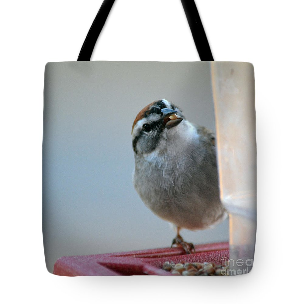 Red Tote Bag featuring the photograph Where Did All My Food Go? by Barb Dalton