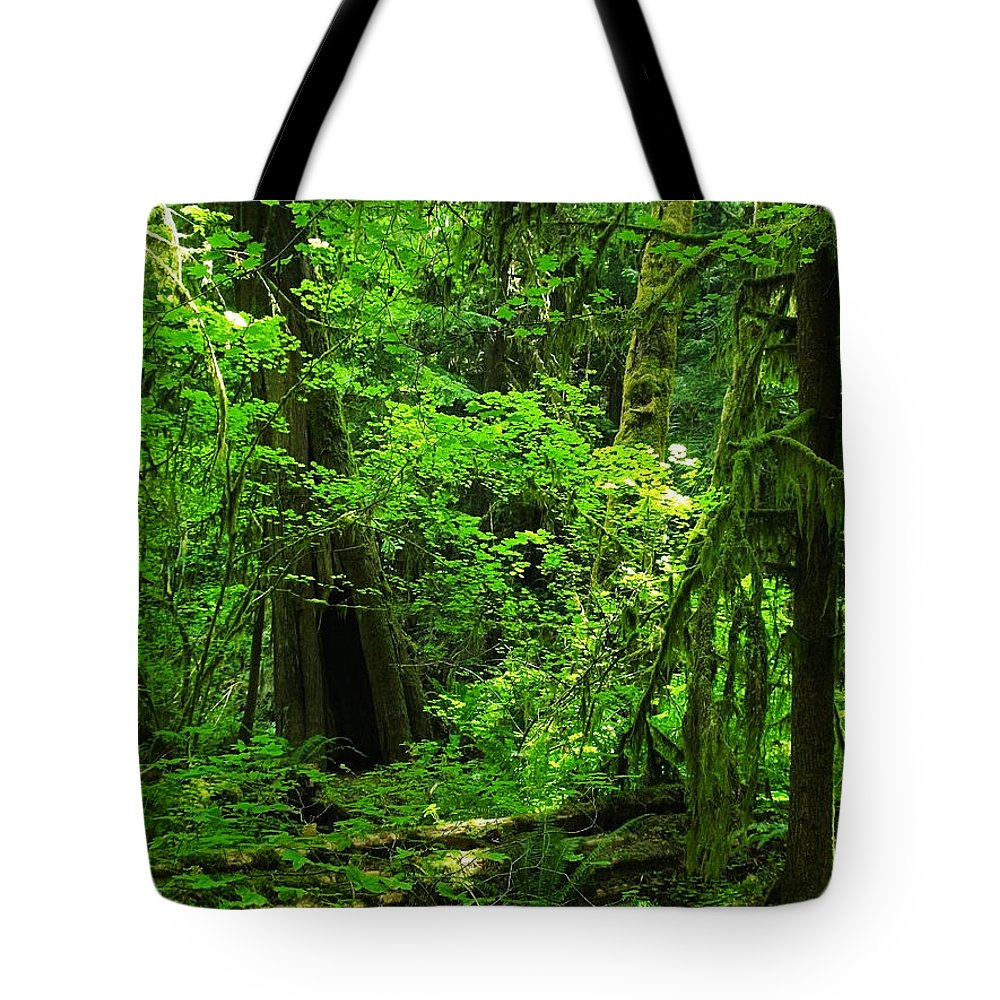 Green Tote Bag featuring the photograph Where The Forest People Live Revised by Teri Schuster