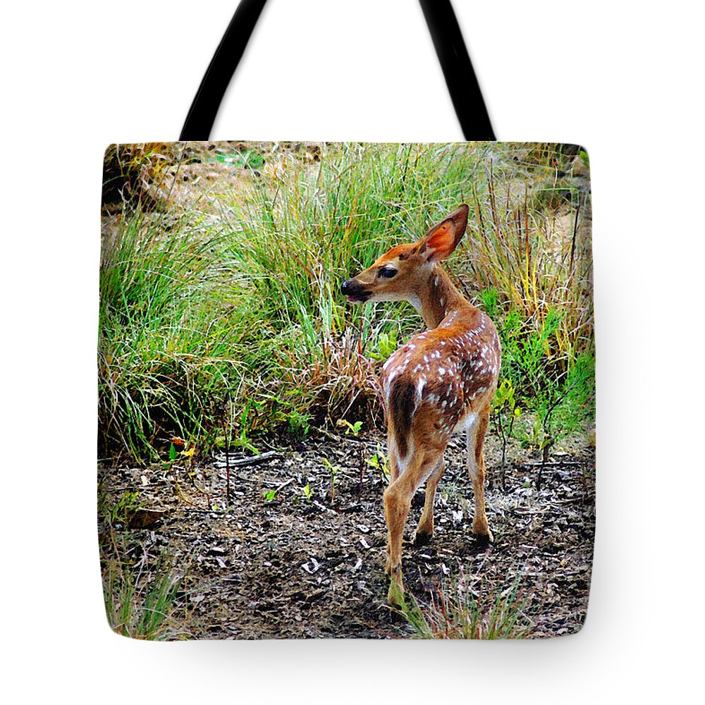 Deer Tote Bag featuring the photograph Where's Momma? by Jeff McJunkin