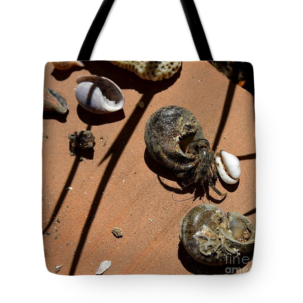 What Is My Tote Bag featuring the photograph Which Is My by Galina Khlupina