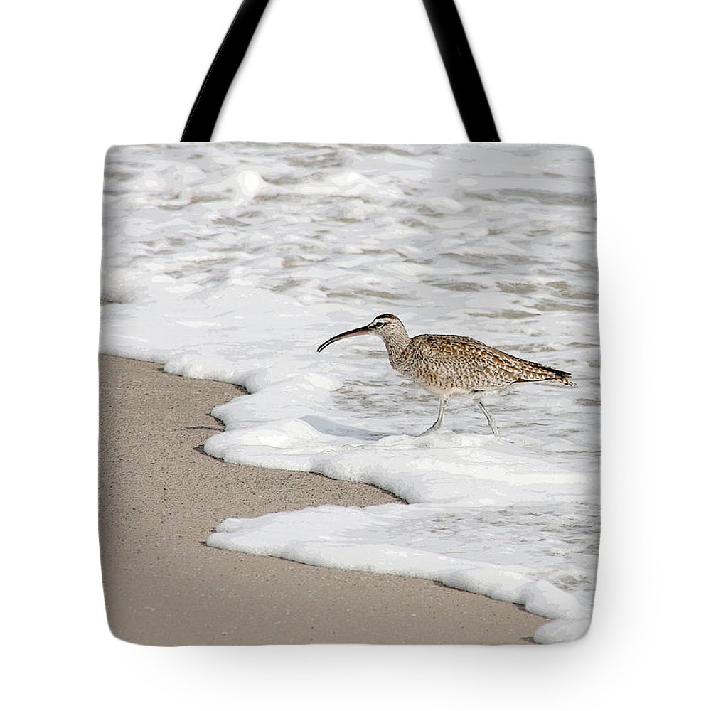 Beach Tote Bag featuring the photograph Whimbrel Wading by Bob and Jan Shriner