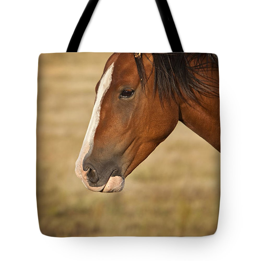 Horse Tote Bag featuring the photograph Whiskey 2 by Jack Milchanowski