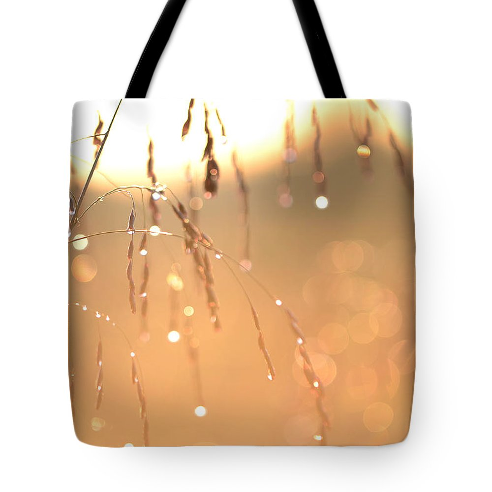 Sunrise Tote Bag featuring the photograph Whispers In The Horizon by Melanie Moraga