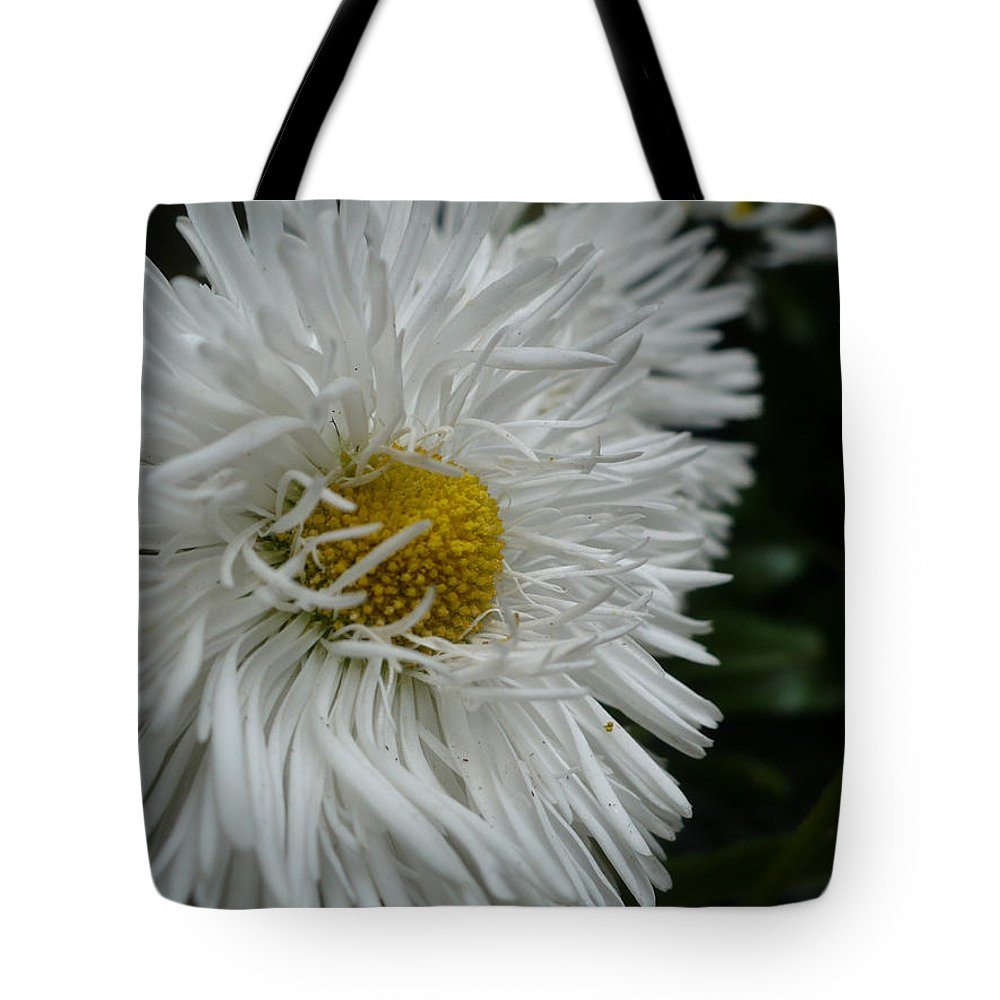 Bachelor Tote Bag featuring the photograph White Bachelor Buttons by Nicki Bennett