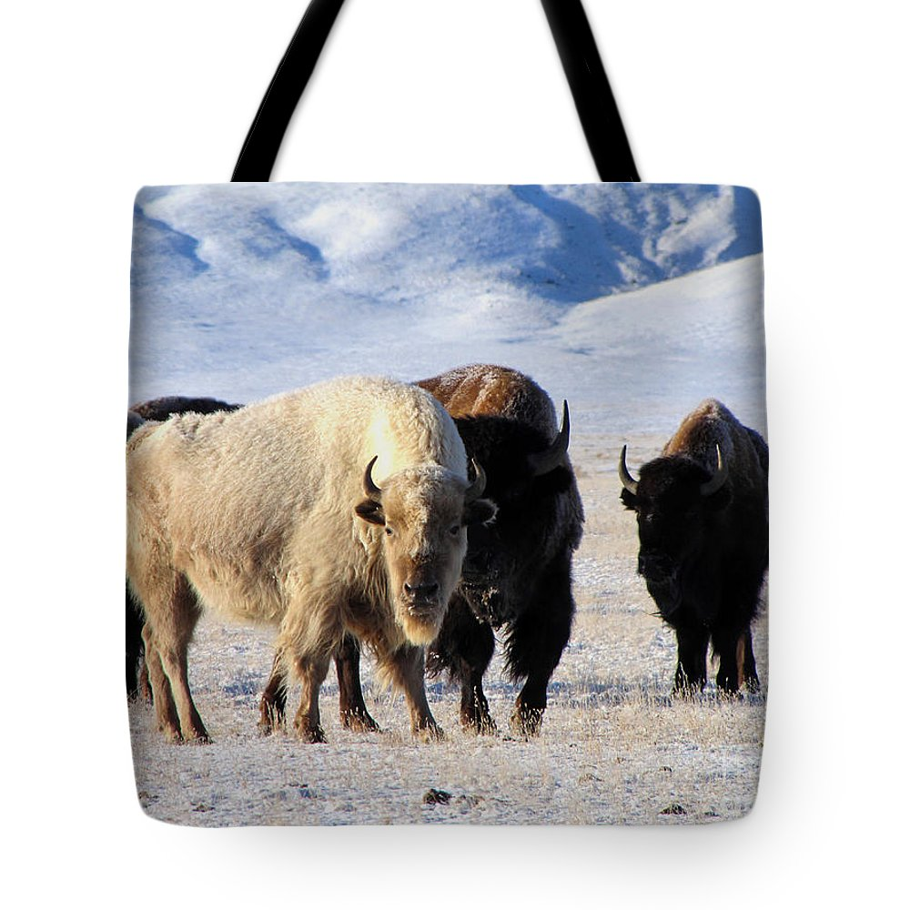 Mountains Tote Bag featuring the photograph White Buffalo by Carol Milisen