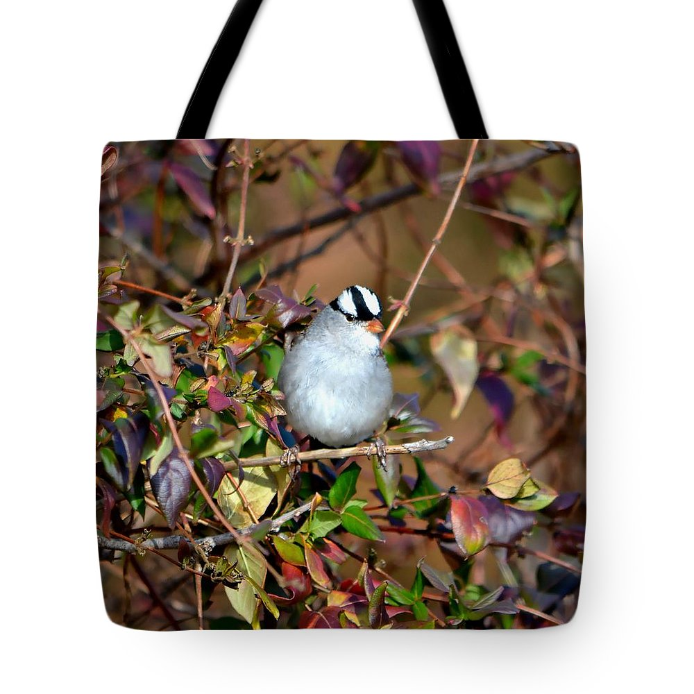 Bird Tote Bag featuring the photograph White Crowned Sparrow by Deena Stoddard