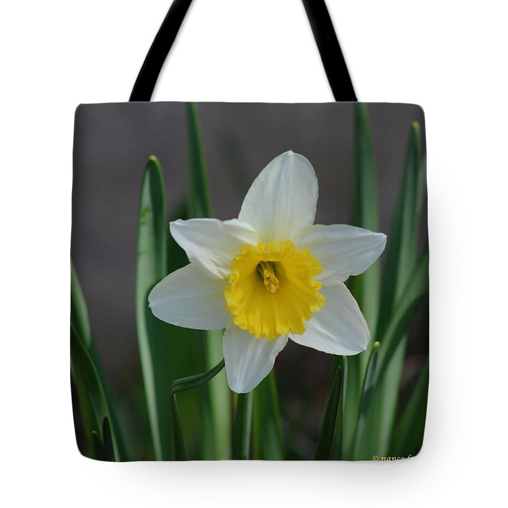 White Tote Bag featuring the photograph White Daffodil by Nance Larson