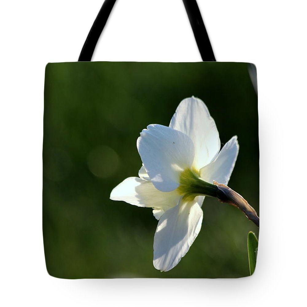 White Tote Bag featuring the photograph White Daffodil Rear Profile by Kenny Glotfelty